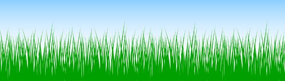 Field, green grass on white background - vector. Field, green grass on white background - stock vector Stock Photography