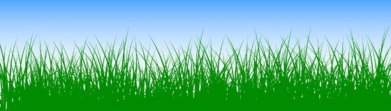 Field, green grass on white background - vector. Field, green grass on white background - stock vector Stock Photos
