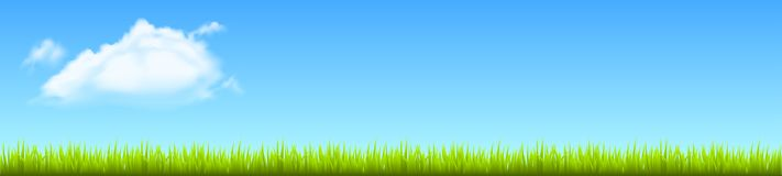 Field, green grass with white cloud - vector. Field, green grass with white cloud - stock vector Stock Photo