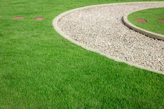 Field green grass and white stone Stock Images