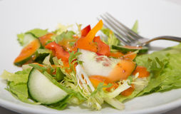 Field Green Salad with French Dressing stock photo