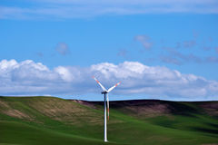field green turbines wind Arkivfoton