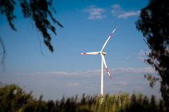 field green turbines wind Arkivbild