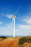 field green turbines wind Royaltyfria Bilder