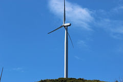 field green turbines wind Royaltyfri Bild