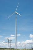 field green turbines wind Royaltyfri Bild