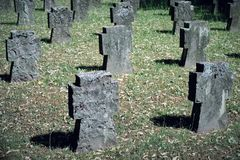 Field of grey, old and small tombstones on a graveyard partly covered in moss with no names on it stock image