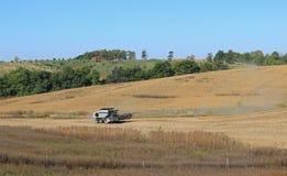 Field Harvest Stock Photo