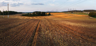 Field after harvest Royalty Free Stock Photography