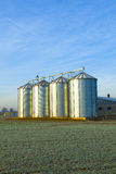 Field in harvest with silo Stock Photography