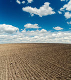Field after harvesting and blue cloudy sky. Black plowed field after harvesting and blue cloudy sky Royalty Free Stock Photography