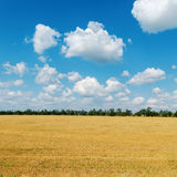 Field after harvesting and clouds over it Royalty Free Stock Photo
