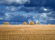 Field with hay bales. After harvesting, heavy sky Stock Images