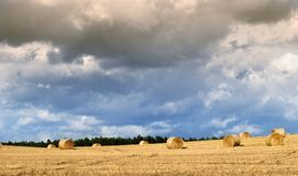 Field with hay bales. After harvesting, heavy sky Royalty Free Stock Image