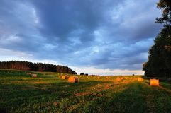 Field with hay bales against a picturesque cloudy sky in the lig royalty free stock photography