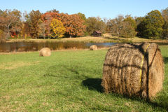 Field of hay. A field with hay bales, fall foliage, and old cabin Royalty Free Stock Image