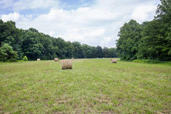 Field Of Hay Royalty Free Stock Photos
