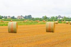 Field haystack Stock Image