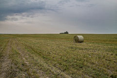 Field and haystack Royalty Free Stock Image