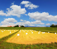 The field with haystacks Stock Photography