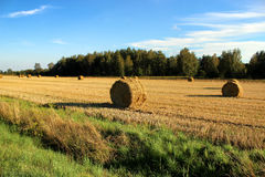 Field with haystacks after the harvest in the village Royalty Free Stock Photos