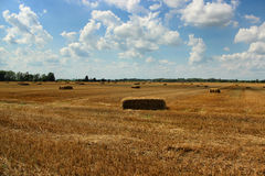 Field with haystacks of hay after the harvest in the village Royalty Free Stock Image