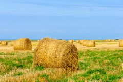 Field with haystacks and the ocean, Normandy, France. Field with haystacks and the ocean in the background, in the village Saint-Pierre-en-Port, Normandy, France royalty free stock photos