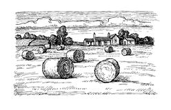 Field with haystacks. Rural landscape with hay bales. Wheat field and farm. Countryside scenery. Retro style royalty free illustration