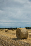 Field with haystacks Royalty Free Stock Image
