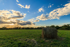 Field with haystacks at sunset in early autumn Royalty Free Stock Images