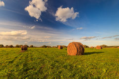 Field with haystacks at sunset in early autumn Royalty Free Stock Image