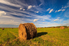 Field with haystacks at sunset in early autumn Stock Images