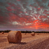 Field with haystacks on sunset Royalty Free Stock Photos