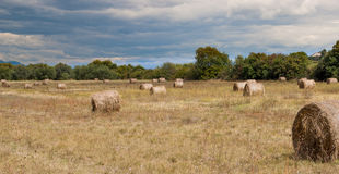 Field with haystacks. View of the haystack on background of the forest and cloudy sky Royalty Free Stock Photography