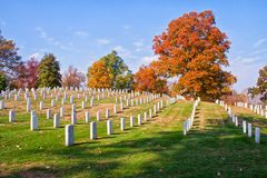 Field of headstones in fall. Lines of headstones in a field with autumn trees in the background royalty free stock image