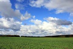 Field heaven cloud Royalty Free Stock Photos