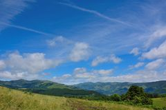 Field in the highlands, between Vic-sur -cere and Le Lioran. Royalty Free Stock Photo