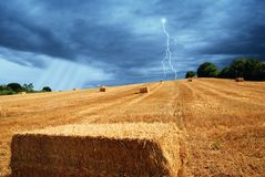 Field  on the hill after threshing Royalty Free Stock Photo