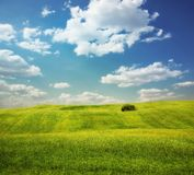 Field with hills Royalty Free Stock Image