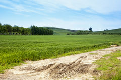 Field and hills Stock Photography