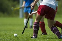 Field Hockey. A field hockey player hits the ball Stock Image