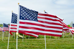 Field of Honor Event Stock Image