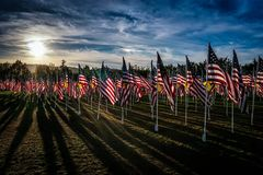 Field of Honor Stock Photo