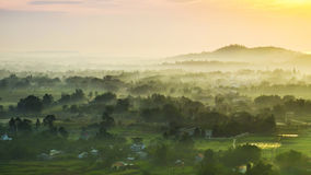 The field. I`m photographer from Vietnam Royalty Free Stock Image