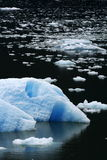 Field of Ice. A large iceberg and many smaller chunks of ice floating in the ocean stock photos