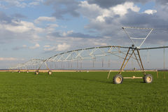 Field irrigated by a pivot sprinkler system. Royalty Free Stock Photo