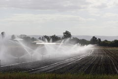 Field irrigation. Sprinkler irrigation system watering cultivated farm land (Australian farmland&#x29 Royalty Free Stock Photography