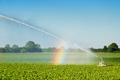 Field irrigation stock images