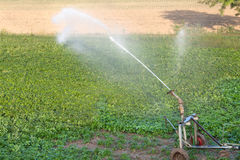 Field irrigation Royalty Free Stock Photos