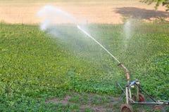 Field irrigation Royalty Free Stock Photos